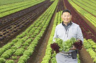 With Allan Fong (market gardener)