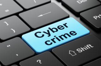 cyber-crime-survey1a