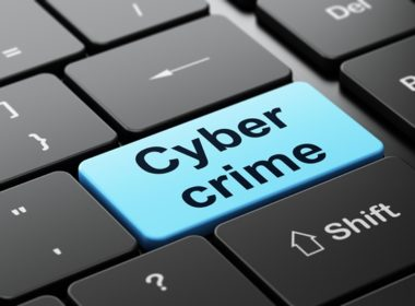 cyber-crime-survey1a