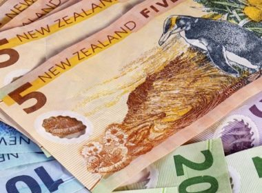 A new survey shows that fewer professionals will receive an increase while the value of the increases on offer will also fall. Photo Pathwaysnz.com