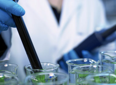 New Zealand's research and development investment levels are about half of the OECD average. Photo www.geistlich-na.com